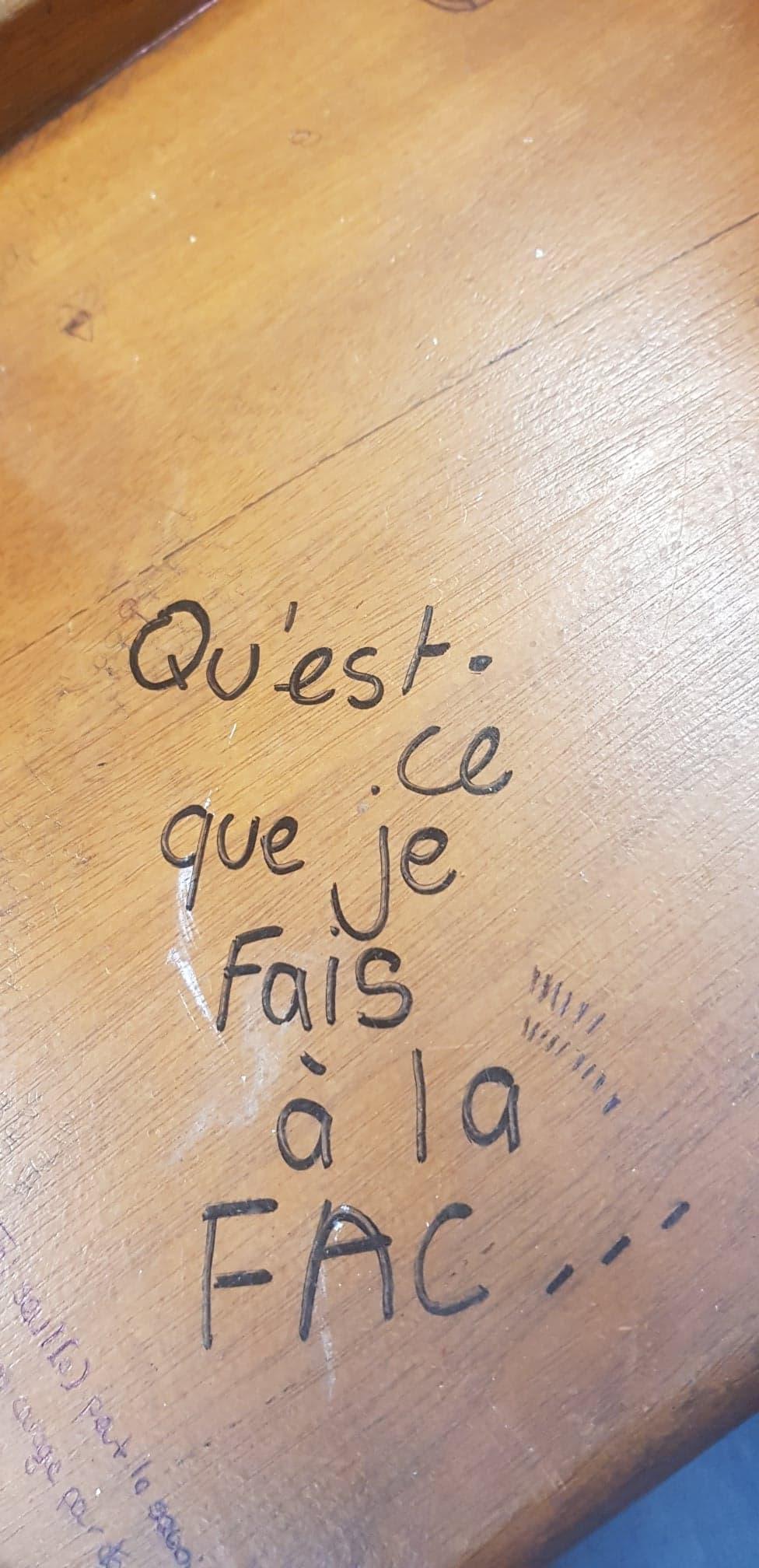 جامعتي الفرنسية ولغتي العربية!